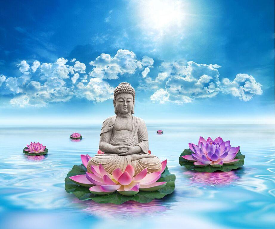 Take A Break & Meditate Evening