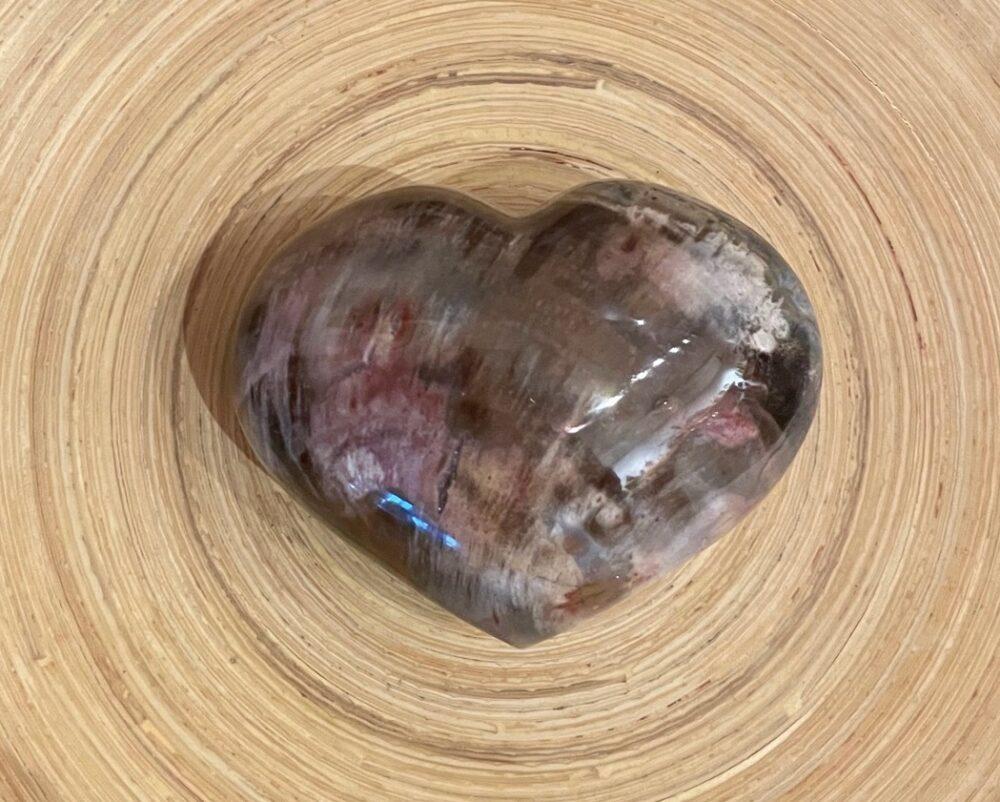 Petrified Wood Heart Stone