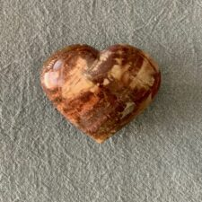 Petrified Wood Heart Stone