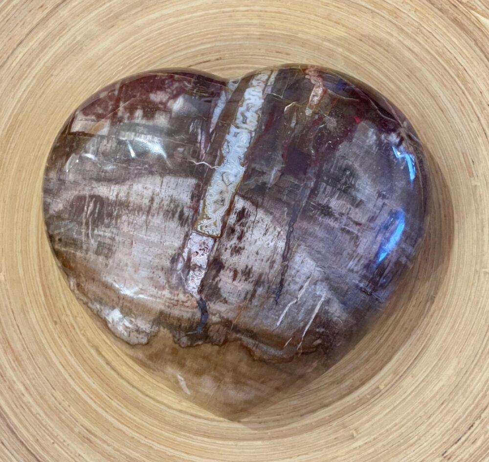 Extra Large Petrified Wood Heart